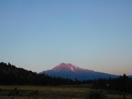 MT SHASTA AT TWILIGHT - FROM THE CE-5 EVENT FIELD